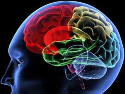 020-neurologia
