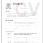 plantilla-curriculum-basico-para-rellenar